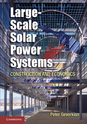 Large-Scale Solar Power Systems: Construction and Economics (Hardback)