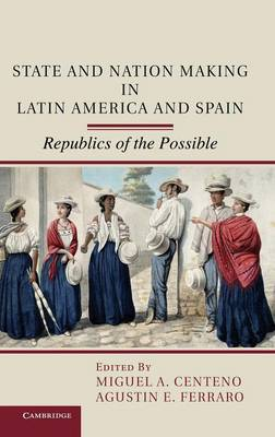 State and Nation Making in Latin America and Spain: Republics of the Possible (Hardback)