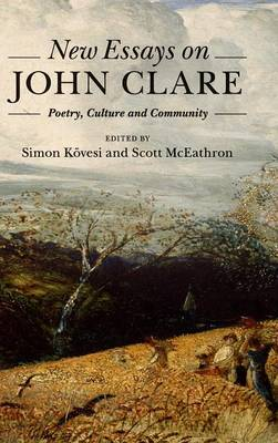 New Essays on John Clare: Poetry, Culture and Community (Hardback)