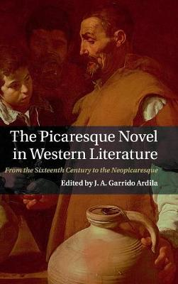 The Picaresque Novel in Western Literature: From the Sixteenth Century to the Neopicaresque (Hardback)