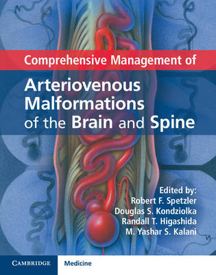 Comprehensive Management of Arteriovenous Malformations of the Brain and Spine (Hardback)