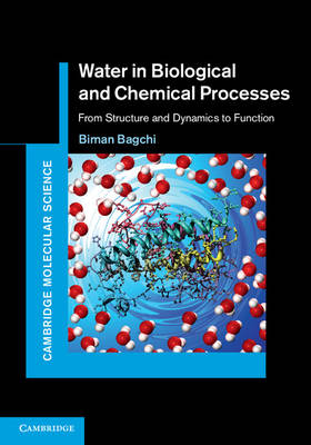 Water in Biological and Chemical Processes: From Structure and Dynamics to Function - Cambridge Molecular Science (Hardback)