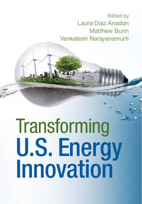 Transforming US Energy Innovation (Hardback)