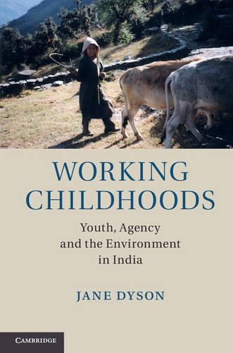 Working Childhoods: Youth, Agency and the Environment in India (Hardback)