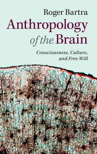 Anthropology of the Brain: Consciousness, Culture, and Free Will (Hardback)