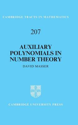 Cambridge Tracts in Mathematics: Auxiliary Polynomials in Number Theory Series Number 207 (Hardback)