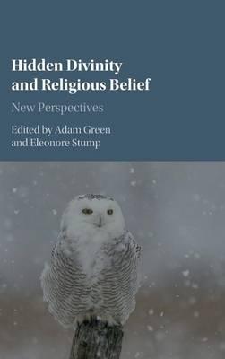 Hidden Divinity and Religious Belief: New Perspectives (Hardback)