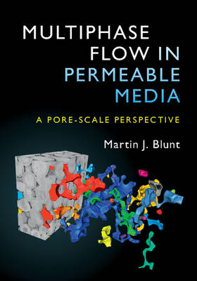 Multiphase Flow in Permeable Media: A Pore-Scale Perspective (Hardback)