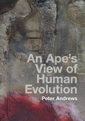 An Ape's View of Human Evolution (Hardback)