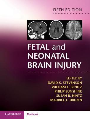 Fetal and Neonatal Brain Injury (Hardback)