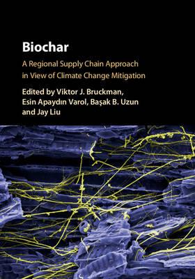 Biochar: A Regional Supply Chain Approach in View of Climate Change Mitigation (Hardback)