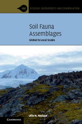 Soil Fauna Assemblages: Global to Local Scales - Ecology, Biodiversity and Conservation (Hardback)