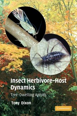 Insect Herbivore-Host Dynamics: Tree-Dwelling Aphids (Paperback)