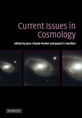 Current Issues in Cosmology (Paperback)