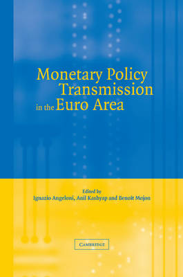 Monetary Policy Transmission in the Euro Area: A Study by the Eurosystem Monetary Transmission Network (Paperback)