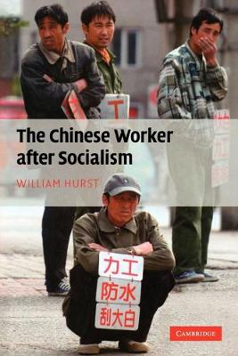 The Chinese Worker after Socialism (Paperback)
