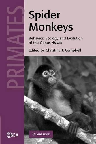 Cambridge Studies in Biological and Evolutionary Anthropology: Spider Monkeys: Behavior, Ecology and Evolution of the Genus Ateles Series Number 55 (Paperback)
