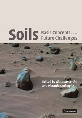 Soils: Basic Concepts and Future Challenges (Paperback)