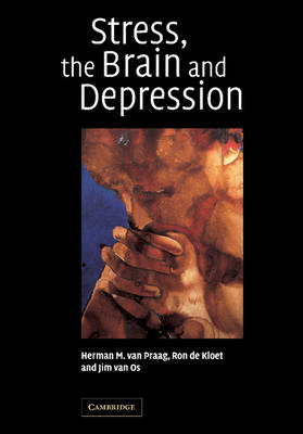 Stress, the Brain and Depression (Paperback)