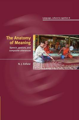 The Anatomy of Meaning: Speech, Gesture, and Composite Utterances - Language Culture and Cognition 8 (Paperback)