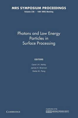 Photons and Low Energy Particles in Surface Processing: Volume 236 - MRS Proceedings (Paperback)