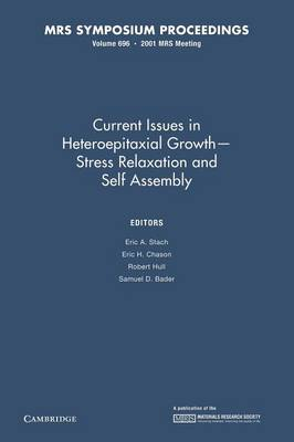 Current Issues in Heteropitaxial Growth - Stress Relaxation and Self Assembly: Volume 696 - MRS Proceedings (Paperback)