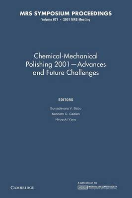 Chemical-Mechanical Polishing 2001 - Advances and Future Challenges: Volume 671 - MRS Proceedings (Paperback)