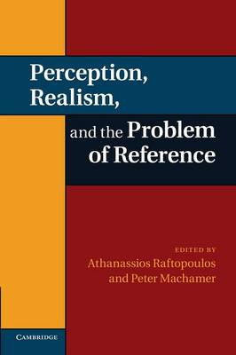 Perception, Realism, and the Problem of Reference (Paperback)