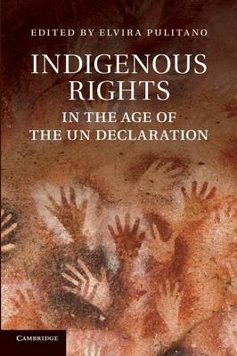 Indigenous Rights in the Age of the UN Declaration (Paperback)