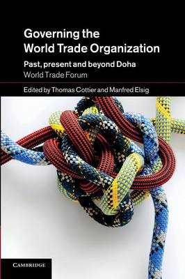 Governing the World Trade Organization: Past, Present and Beyond Doha (Paperback)