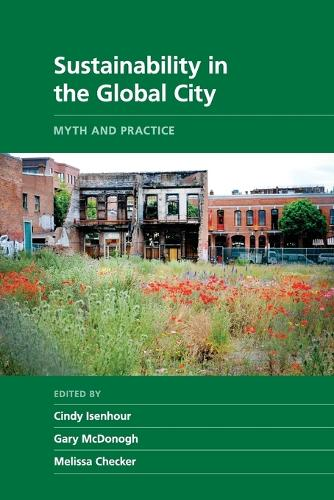 Sustainability in the Global City: Myth and Practice - New Directions in Sustainability and Society (Paperback)