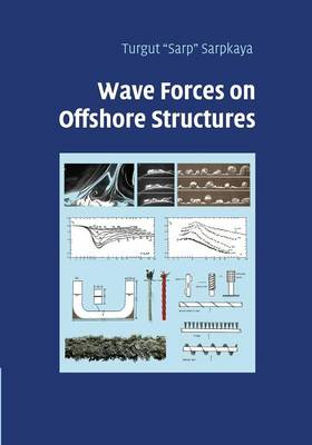 Wave Forces on Offshore Structures (Paperback)