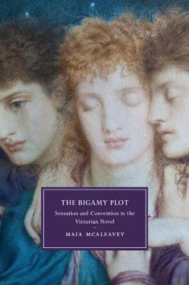 The Bigamy Plot: Sensation and Convention in the Victorian Novel - Cambridge Studies in Nineteenth-Century Literature & Culture 100 (Paperback)