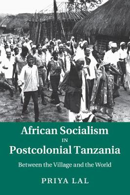 African Socialism in Postcolonial Tanzania: Between the Village and the World (Paperback)