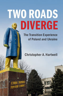 Two Roads Diverge: The Transition Experience of Poland and Ukraine (Paperback)