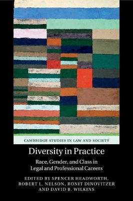 Diversity in Practice: Race, Gender, and Class in Legal and Professional Careers - Cambridge Studies in Law and Society (Paperback)