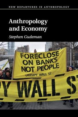 Anthropology and Economy - New Departures in Anthropology (Paperback)