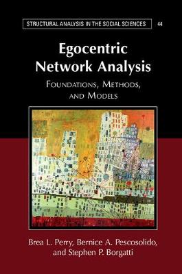 Structural Analysis in the Social Sciences: Egocentric Network Analysis : Foundations, Methods, and Models Series Number 44 (Paperback)