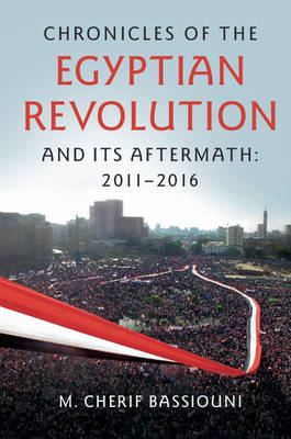 Chronicles of the Egyptian Revolution and its Aftermath: 2011-2016 (Paperback)