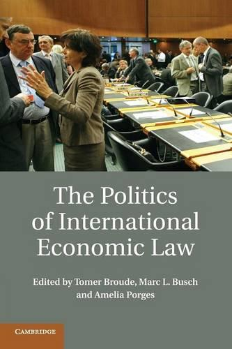 The Politics of International Economic Law (Paperback)