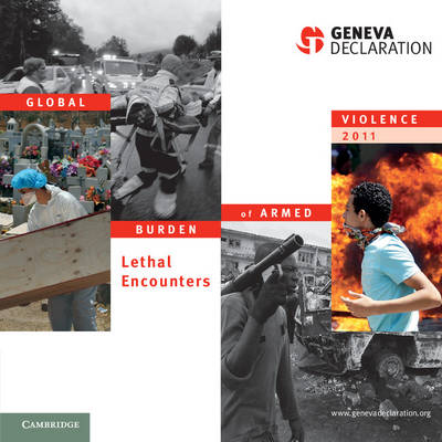 Global Burden of Armed Violence 2011: Lethal Encounters - Global Burden of Armed Violence (Paperback)