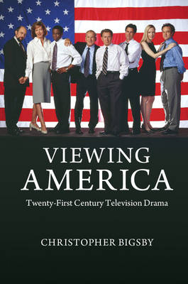 Viewing America: Twenty-First-Century Television Drama (Paperback)