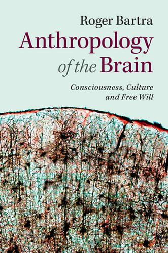 Anthropology of the Brain: Consciousness, Culture, and Free Will (Paperback)