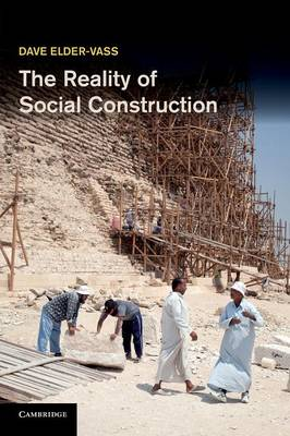 The Reality of Social Construction (Paperback)