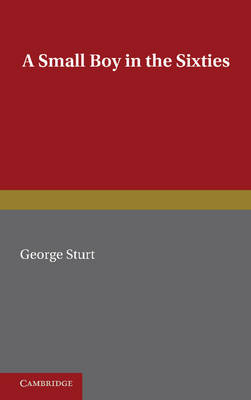 A Small Boy in the Sixties (Paperback)