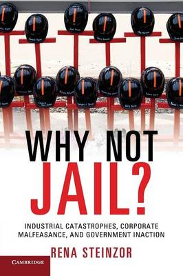 Why Not Jail?: Industrial Catastrophes, Corporate Malfeasance, and Government Inaction (Paperback)