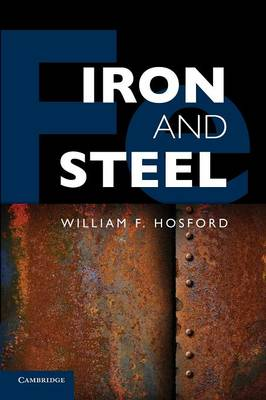 Iron and Steel (Paperback)