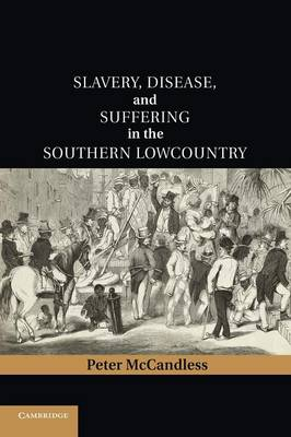 Cambridge Studies on the American South: Slavery, Disease, and Suffering in the Southern Lowcountry (Paperback)
