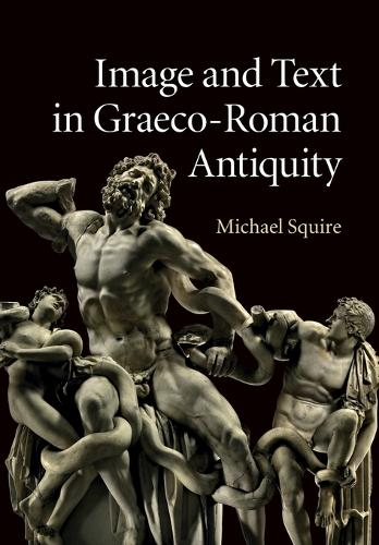 Image and Text in Graeco-Roman Antiquity (Paperback)