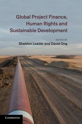 Global Project Finance, Human Rights and Sustainable Development (Paperback)
